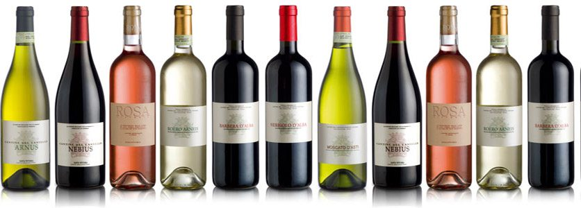 Fotos garrafas de vinhos 41