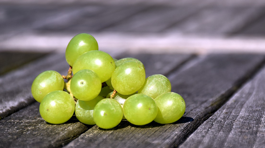 tipo uva branca