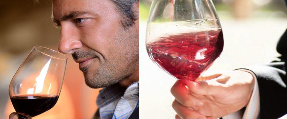 odores vinho
