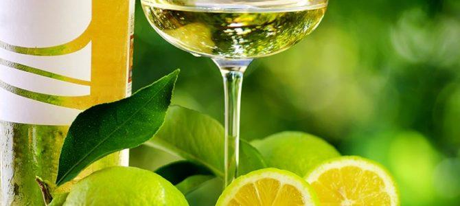 Acidez no Vinho