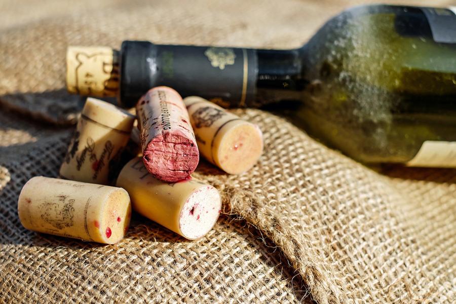 aprender sobre vinhos
